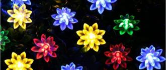 Stargirl цветочки с солнечным питанием